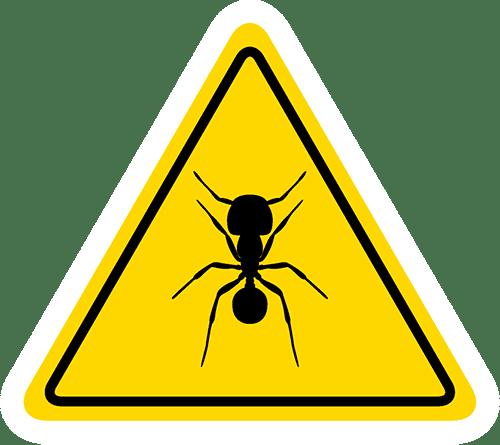 滅蟲公司推介 (6)